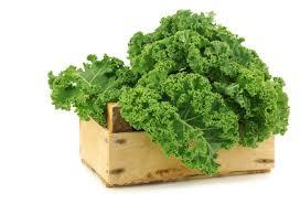 Grünkohl gegen Bluthochdruck