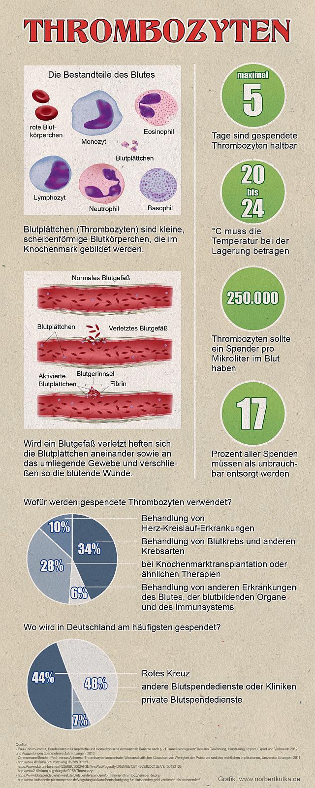 Ratgeber und Informationen zur Thrombozytenspende
